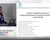 AVALIAÇÃO DOPPLERFLUXOMÉTRICA E ANATOMOPATOLÓGICA DA ISQUEMIA RENAL: MODELO EXPERIMENTAL DE KIDNEY-KIDNEY CROSSTALK